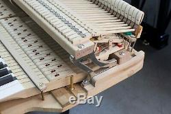 2004 Bluthner 6'11 Grand Piano Model 4 ($131K retail) VIDEOS Also Steinway