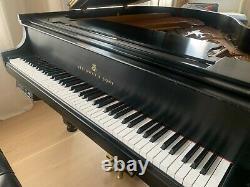 2005 Steinway Grand Piano Model S Ebony