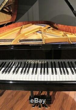 2006 Bluthner Model 2 Semi-Concert Grand Piano 7'10'