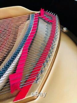 2006 Stunning Steinway & Sons Model M Grand Piano Showroom Ready