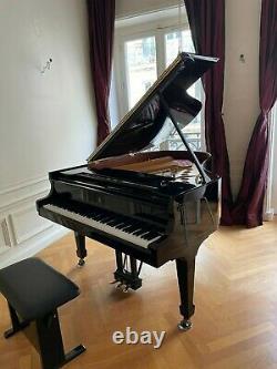 2010 Steinway Grand Piano Model M Ebony