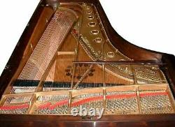 #5535 Antique Steinway Rosewood Centennial Model D Fancy Concert Grand Piano