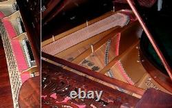 #7124 Magnificent Antique Steinway Model B Grand Piano