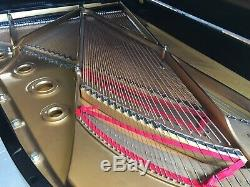 Beautiful Steinway & Sons Model B Grand Piano Made In 1982