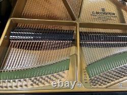 Bechstein B 6'8 Grand Piano Picarzo Pianos 1982 Model $170K retail VIDEOS