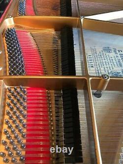 Bechstein Model B Grand piano- Impressive condition