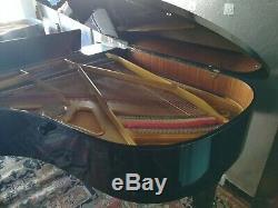 Equal Steinway Petrof grand piano 6'4 model III