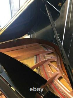 Grand Piano Young chang Brand New Model Y150(Brand New, open box, 4'11)