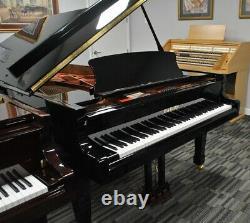 Hailun 218 7'2 Grand Piano Picarzo Pianos 2018 Model Ebony VIDEOS