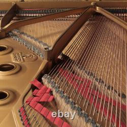 Hamburg Steinway Grand Piano, Model B 6'10 Excellent Condition