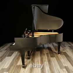 Hamburg Steinway Grand Piano, Model M