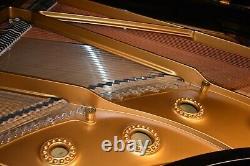 Mason & Hamlin Grand Piano-model Aa-rebuilt & Refinished