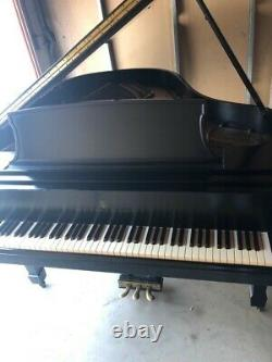 One Owner Passionately Loved Meticiously Maintained Steinway Grand 5'10 Model L