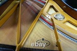 Petrof Model III Grand Piano Black Polish 6'4