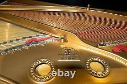Rare STEINWAY & SONS Model C Semi-Concert Grand Piano