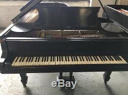 Rare Steinway Concert Grand Model D Piano Underneath Originally Rosewood Veneer