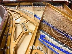 Showroom perfect, un-used BLUTHNER Model 6 / 6'3 Grand Piano BLUETHNER