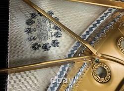 Steinway B 6'11 Grand Piano Picarzo Pianos Polished Mahogany Model