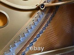 Steinway Baby Grand Model M
