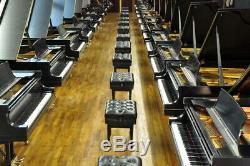 Steinway Entire Collection La Dolce Vita 25 B's 1 Price 2020,16,13,11,09,08,06