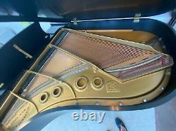 Steinway Grand Piano, Model L, Ebony, Amazing Sound, Chicagoland area