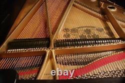 Steinway Grand Piano model A