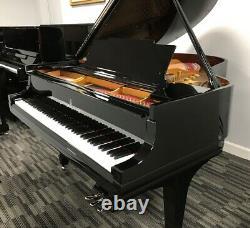 Steinway M 5'7 Grand Piano Picarzo Pianos Polished Ebony Model VIDEO