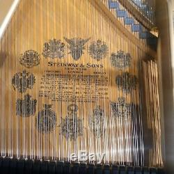 Steinway Model A 6'4 Satin Dark Walnut Grand Piano (with Bench, Warranty & More)