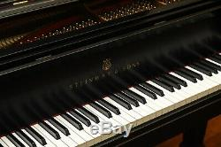 Steinway Model B 2009 Classic withsome darkness, Pianodisc Player System included