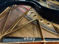 Steinway Model B 611 Ebony Gloss Grand Piano