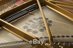 Steinway Model C 7'5 Grand Piano VIDEO Between B and D VERY RARE