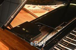 Steinway Model M 2019 / 1933 Rebuilt, High Gloss Silver Plate Great Price