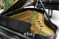 Steinway Model M Grand Piano Ebony Satin