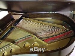 Steinway Model O Grand Piano- Total Restoration Just Completed! Free Shipping
