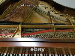 Steinway grand piano model M 1981