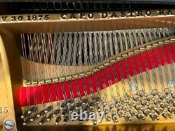 Stellar condition 2008-restored STEINWAY & SONS Model A / 6'2 Grand Piano