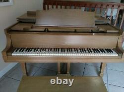 Stenway 1927 Grand Piano Model M serial # 255212G 139 action, Light walnut
