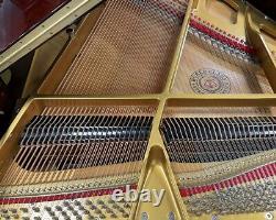 Story & Clark 5'0 Grand Piano Picarzo Pianos Polished Walnut Model VIDEO