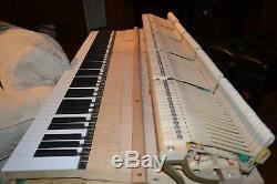 Superior PETROF 7'9 grand piano model II & Steinway key felt cover