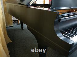 VIDEO Steinway & Sons Model B Grand Piano MUST SEE Beautiful Sound & Touch