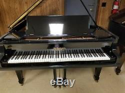 Wm Knabe Model A Grand Piano Total Restoration